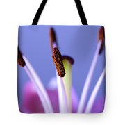 Pastels And Chocolate Tote Bag by Christi Kraft