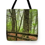 Path into the Forest Tote Bag by Debra and Dave Vanderlaan