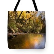 Peace Like A River Tote Bag by Debra and Dave Vanderlaan