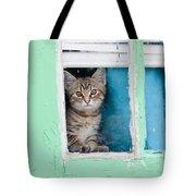 Peek-a-boo Tote Bag by Jean Haynes