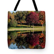 Perfect Day Tote Bag by Rob Blair