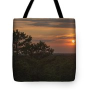 Pine Barrens Sunset Nj Tote Bag by Terry DeLuco