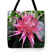 Pink Bromeliad Tote Bag by Andee Design