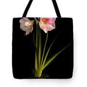 Pink Diamond Amaryllis Tote Bag by Claudio Bacinello