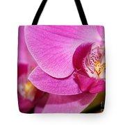 Pink Orchids Tote Bag by Sabrina L Ryan