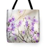 Pink Rhododendron In Spring Tote Bag by Elena Elisseeva