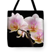 Pink Sensations Tote Bag by Juergen Roth