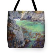 Playtime At China Cove Tote Bag by Sharon Weaver