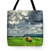 Plentiful Tote Bag by Reid Callaway