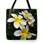 Plumeria In The Sunshine Tote Bag by Kaye Menner