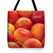 Plums  Tote Bag by Elena Elisseeva