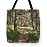 Point Lobos Cypress Path Tote Bag by Jack Schultz