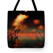 Pointing at the Moon Tote Bag by Mal Bray