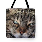 Ponder Tote Bag by Susan Smith