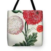 Poppy Tote Bag by Basilius Besler