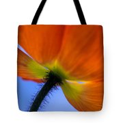 Poppy Portrait Tote Bag by Kathy Yates