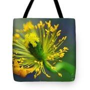 Poppy Seed Capsule 2 Tote Bag by Kaye Menner