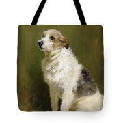 Portrait of Pilu Tote Bag by John Charlton