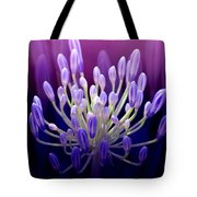 Praise Tote Bag by Holly Kempe