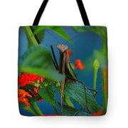 Praying Mantis Tote Bag by Raymond Salani III