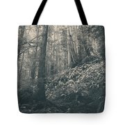 Pretty Darling Do Not Cry Tote Bag by Laurie Search