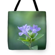 Pretty In Purple Tote Bag by Kim Hojnacki