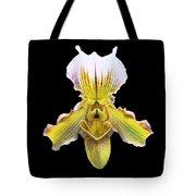 Pretty Paphiopedilum Orchid Ver. 2 Tote Bag by Susan Wiedmann