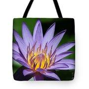 Pretty Purple Petals Tote Bag by Sabrina L Ryan