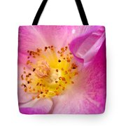 Pride Tote Bag by Cathleen Cario-Reece