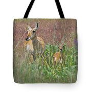 Pronghorn Doe And Fawn Tote Bag by Karon Melillo DeVega