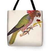 Psittacus Accipitrinus Tote Bag by German School