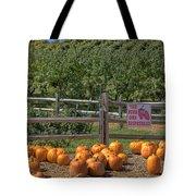 Pumpkins On The Farm Tote Bag by Joann Vitali