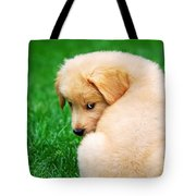 Puppy Love Tote Bag by Christina Rollo