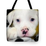 Puppy Pose With 4 Spots On Nose Tote Bag by Peggy  Franz