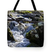 Pure Mountain Stream Tote Bag by Bill Cannon
