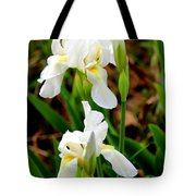 Purity In Pairs Tote Bag by Kathy  White
