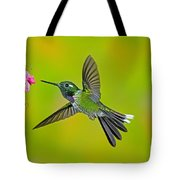 Purple-bibbed Whitetip Hummingbird Tote Bag by Anthony Mercieca