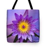 Purple Tote Bag by Heiko Koehrer-Wagner