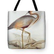 Purple Heron Tote Bag by Edward Lear