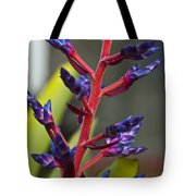 Purple Spike Bromeliad Tote Bag by Sharon Cummings
