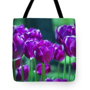 Purple Tulips Tote Bag by Allen Beatty