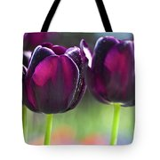 Purple tulips Tote Bag by Heiko Koehrer-Wagner