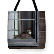 Purrfect Tote Bag by Kathy Bassett