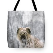 Pyrenean Shepherd Dog Tote Bag by Jean-Paul Ferrero