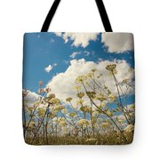 Queen Anne Lace and Sky Tote Bag by Jenny Rainbow