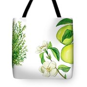 Quince Tree Tote Bag by Anonymous
