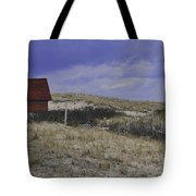 Race Point Light Shed Tote Bag by Catherine Reusch  Daley