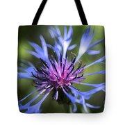 Radiant Flower Tote Bag by Belinda Greb
