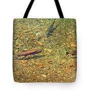Rainbow Trout Tote Bag by Tonya Hance