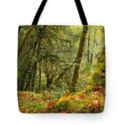 Rainforest Trunk Tote Bag by Adam Jewell
